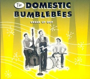 DOMESTIC BUMBLEBEES, THE : Break Up Boy